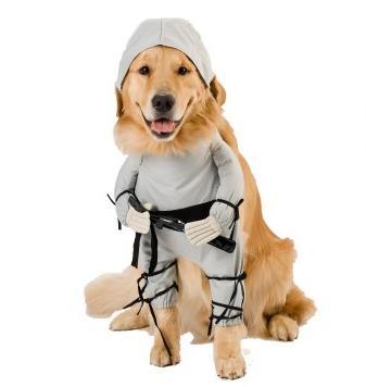 ninja-dog
